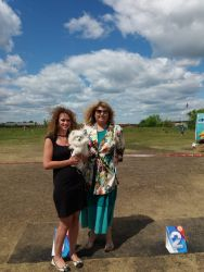 All breed dog show in Kurgan